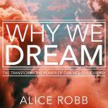 Why We Dream The Transformative Power of Our Nightly Journey, Alice Robb