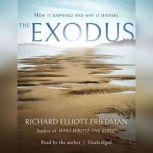 The Exodus, Richard Elliott Friedman