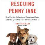 Rescuing Penny Jane One Shelter Volunteer, Countless Dogs, and the Quest to Find Them All Homes, Amy Sutherland