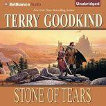 Stone of Tears, Terry Goodkind
