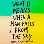 What It Means When a Man Falls from the Sky Stories, Lesley Nneka Arimah