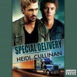 Special Delivery, Heidi Cullinan