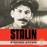 Stalin, Volume I Paradoxes of Power, 1878-1928, Stephen Kotkin