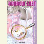 In the Bathroom Andrew Lost #2, J. C. Greenburg