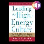 Leading the High Energy Culture: What the Best CEOs Do to Create an Atmosphere Where Employees Flourish, David Casullo