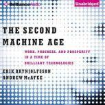 The Second Machine Age Work, Progress, and Prosperity in a Time of Brilliant Technologies, Erik Brynjolfsson
