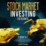 Stock Market Investing for Beginners: 3 Books in 1 33 Best Stock Investing Strategies + 36 Advanced Stock Investing Strategies + 41 Expert Investing Expert Strategies, James Turner