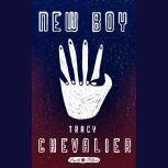 New Boy, Tracy Chevalier
