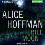 Turtle Moon, Alice Hoffman
