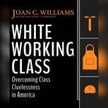 White Working Class Overcoming Class Cluelessness in America, Joan C. Williams