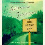Big Stone Gap, Adriana Trigiani