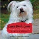 Come Back, Como, Steven Winn