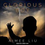 Glorious Boy A Novel, Aimee Liu