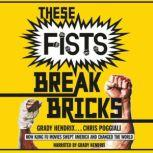 These Fists Break Bricks How Kung Fu Movies Swept America and Changed the World, Chris Poggiali