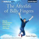 The Afterlife of Billy Fingers How My Bad-Boy Brother Proved to Me There's Life After Death, Annie Kagan
