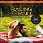 Racing in the Rain, Garth Stein