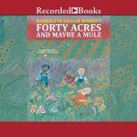 Forty Acres and Maybe a Mule, Harriette Gillem Robinet
