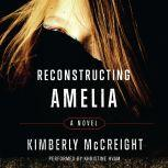 Reconstructing Amelia, Kimberly McCreight