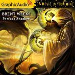A Perfect Shadow, Brent Weeks
