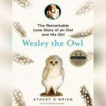 Wesley the Owl The Remarkable Love Story of an Owl and His Girl, Stacey O'Brien