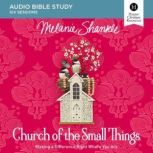 Church of the Small Things Audio Study Making a Difference Right Where You Are, Melanie Shankle
