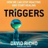 Triggers How We Can Stop Reacting and Start Healing, David Richo