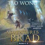 Adventures on Brad Book 4-6, Tao Wong