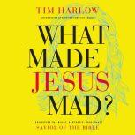 What Made Jesus Mad? Rediscover the Blunt, Sarcastic, Passionate Savior of the Bible, Dr.  Tim Harlow