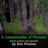 A Consternation of Monsters, Eric Fritzius