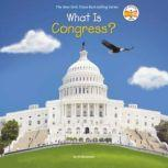 What Is Congress?, Jill Abramson