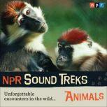 NPR Sound Treks: Animals Unforgettable Encounters in the Wild, Jon Hamilton