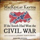 If The South Had Won The Civil War, MacKinlay Kantor