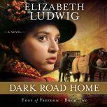 Dark Road Home, Elizabeth Ludwig