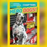 National Geographic Kids Chapters Hero Dogs: True Stories of Amazing Animal Heroes!