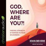 God, Where Are You?! Finding Strength and Purpose in Your Wilderness, John Bevere