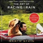 The Art of Racing in the Rain, Garth Stein