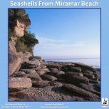 Seashells from Miramar Beach, Miles OBrien Riley PhD