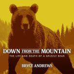 Down from the Mountain The Life and Death of a Grizzly Bear, Bryce Andrews