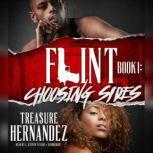 Flint, Book 1 Choosing Sides, Treasure Hernandez
