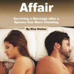 Affair Surviving a Marriage after a Spouse Has Been Cheating, Elsa Harbor