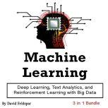 Machine Learning Deep Learning, Text Analytics, and Reinforcement Learning with Big Data, David Feldspar