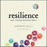 Resilience Why Things Bounce Back, Andrew Zolli