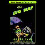 Chet Gecko, Private Eye: Book 3 - The Big Nap, Bruce Hale