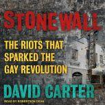 Stonewall The Riots That Sparked the Gay Revolution, David Carter