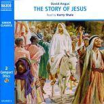 The Story of Jesus, David Angus