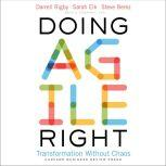 Doing Agile Right Transformation Without Chaos, Steven H. Berez