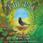 Little Bird, Cynthia Voigt