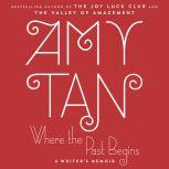 Where the Past Begins A Writer's Memoir, Amy Tan