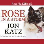Rose in a Storm, Jon Katz