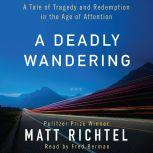 A Deadly Wandering A Tale of Tragedy and Redemption in the Age of Attention, Matt Richtel